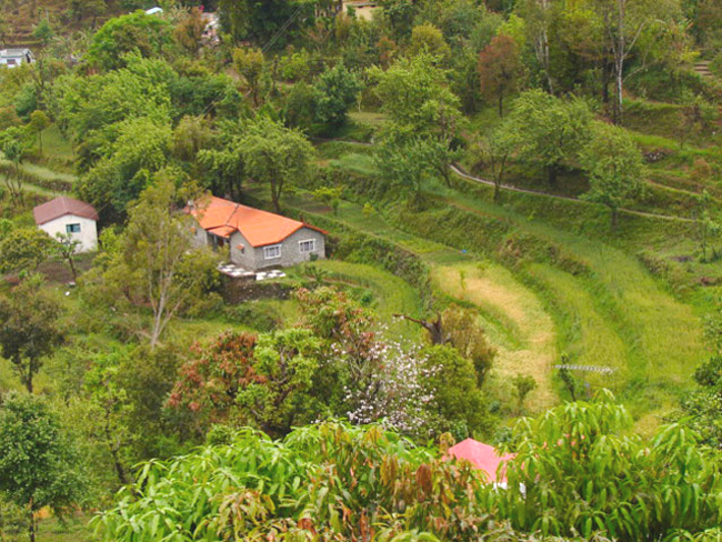Nainital-Tour-Packages